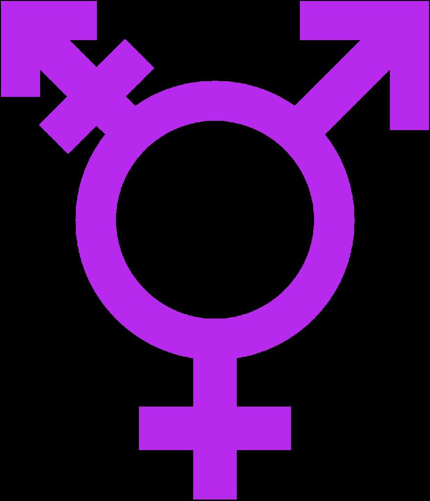 most popular transgender symbol