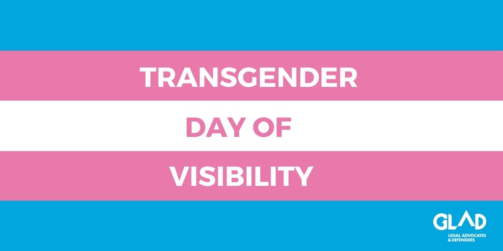 Transgender Flag with TDOV